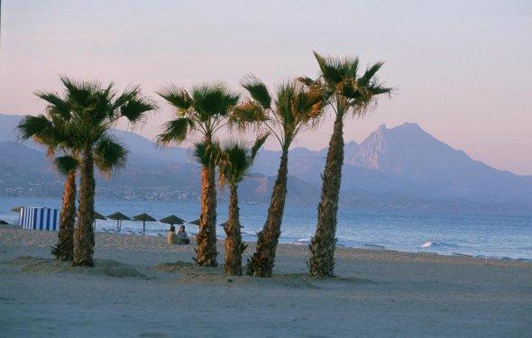 Пальмы на пляже San Juan в
